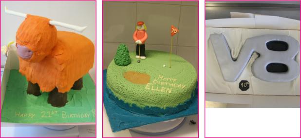 Novelty-Birthday-Cakes-Edinburgh-Licks-Cake-Design-Cupcakes-Scotland61